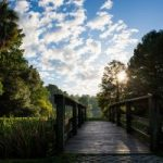 The bridge at Lake Alice with the sunrise in the background
