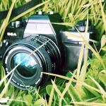 A camera in grass